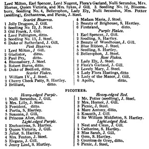 The MIdland Florist 1851 Carnaations