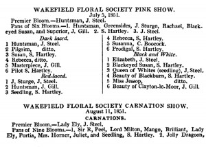 The Midland Florist 1851 Pinks